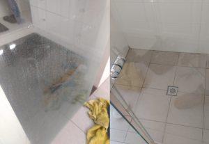 Shower screen restoration